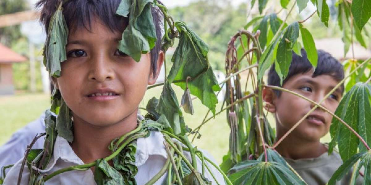 Two young Bolivian boys stand amongst trees with leaves covering their faces