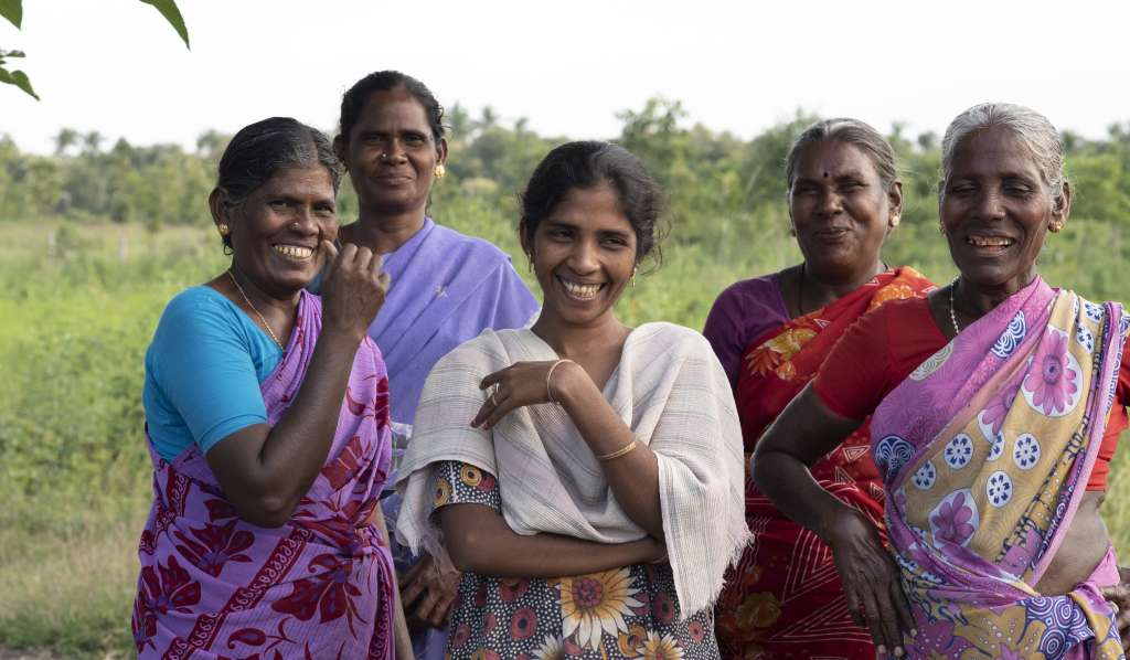 These ladies are a collective of farmer, sharing a farm and working together to build their business in Akkanapuram Village, Virudhunagar District.