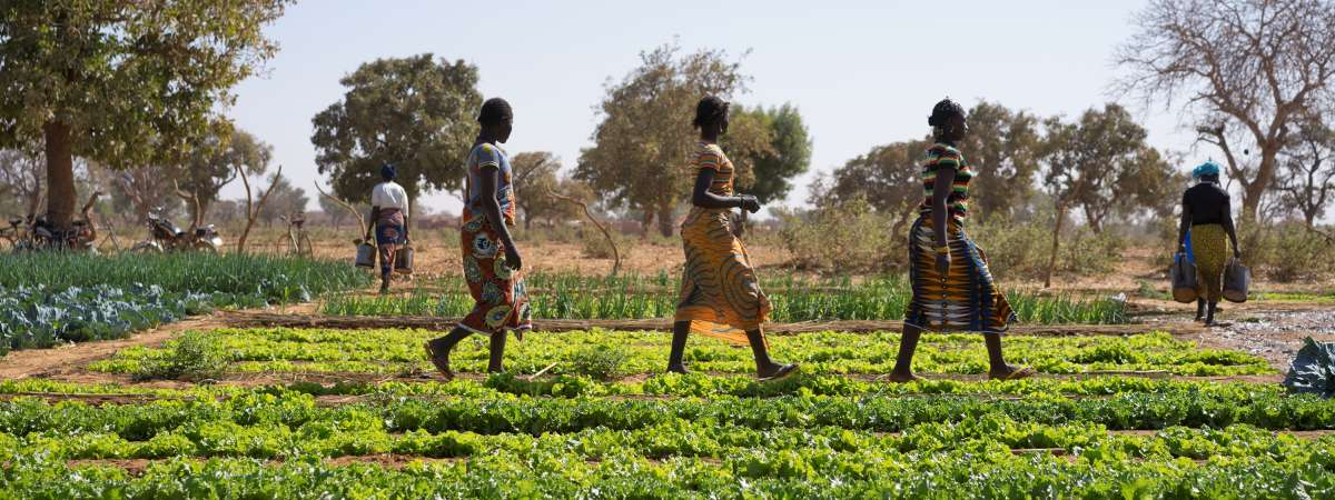 Women walking across irrigation site funded by Christian Aid