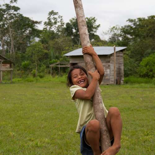 Young girl climbs tree in Bolivia