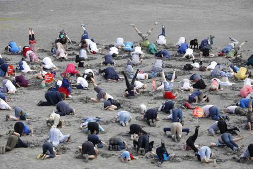 Climate change activists bury their heads in the sand at Sandymount Strand