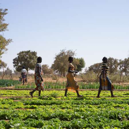 Women walking across an irrigation site at a Christian Aid funded project